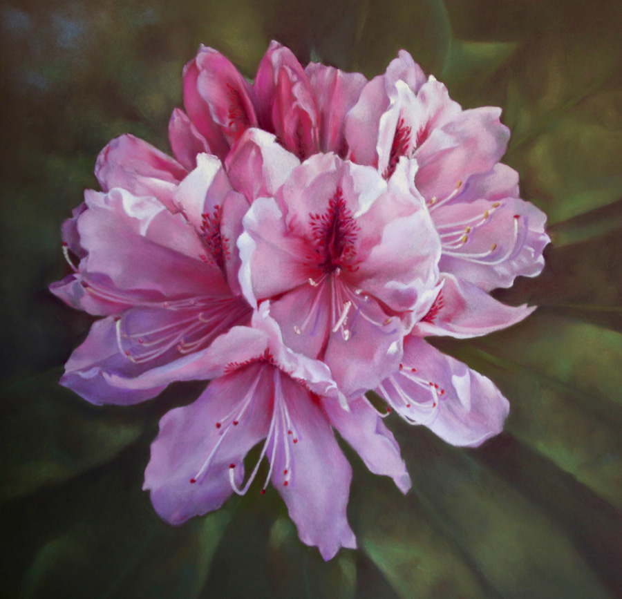 Flora/Fauna - 2nd - Anne Lindley - Pretty in Pink