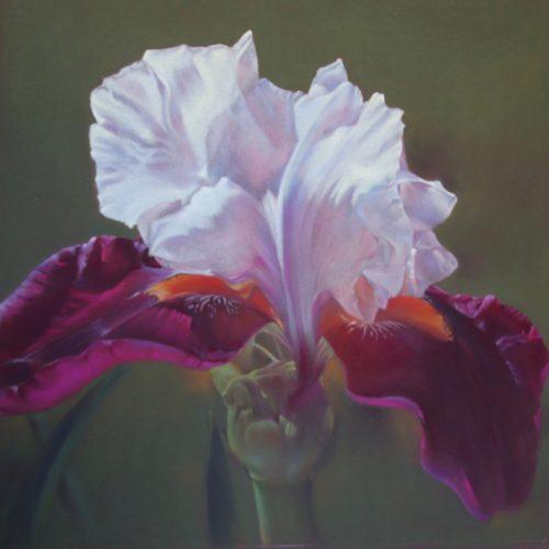 Flora/Fauna - 1st - Anne Lindley - Yellowbeard