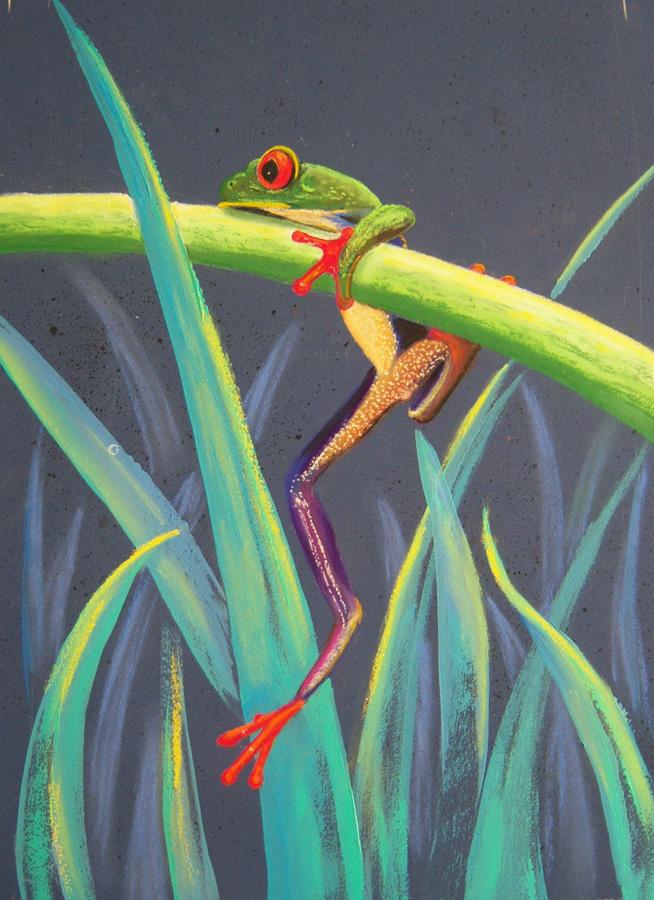 OOPS! (frog) - 36cm x 52cm - framed