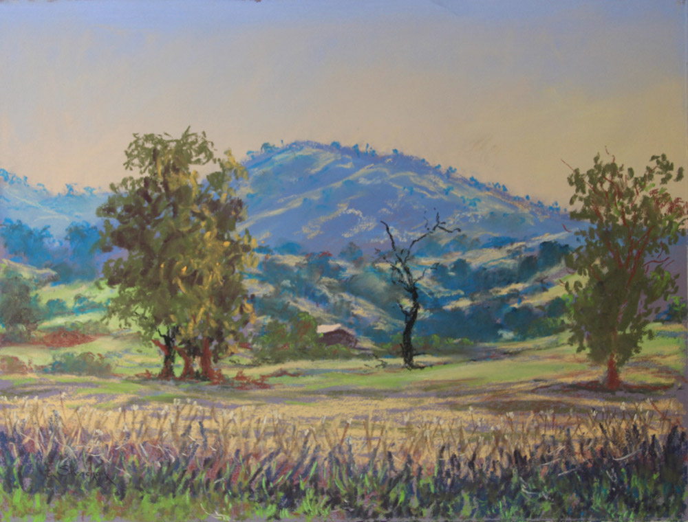 HILLS OF TUMUT 2 - framed - COLOURFIX - Art Spectrum soft pastels