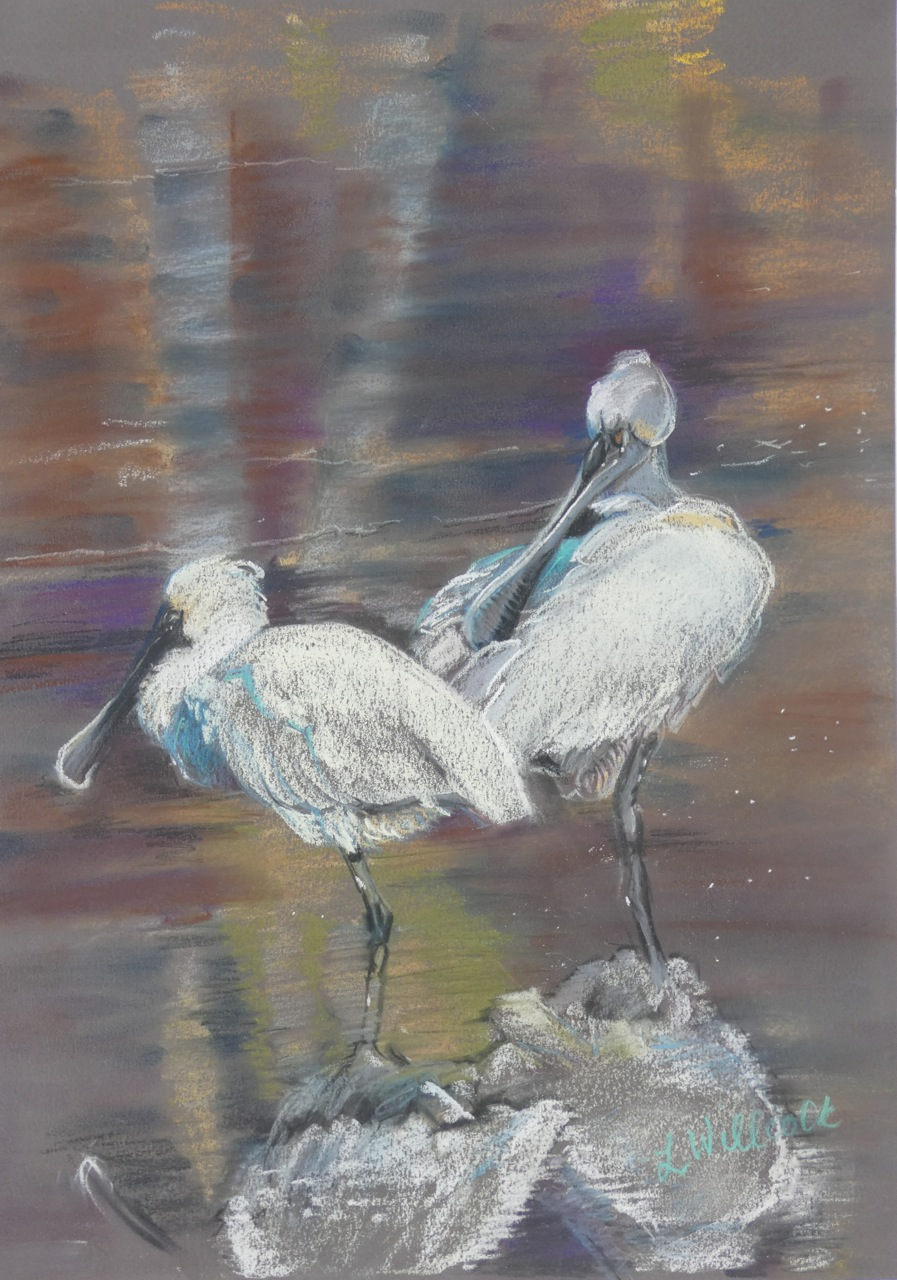 Spoonbills Visiting the Creek 60cm x 48cm - framed