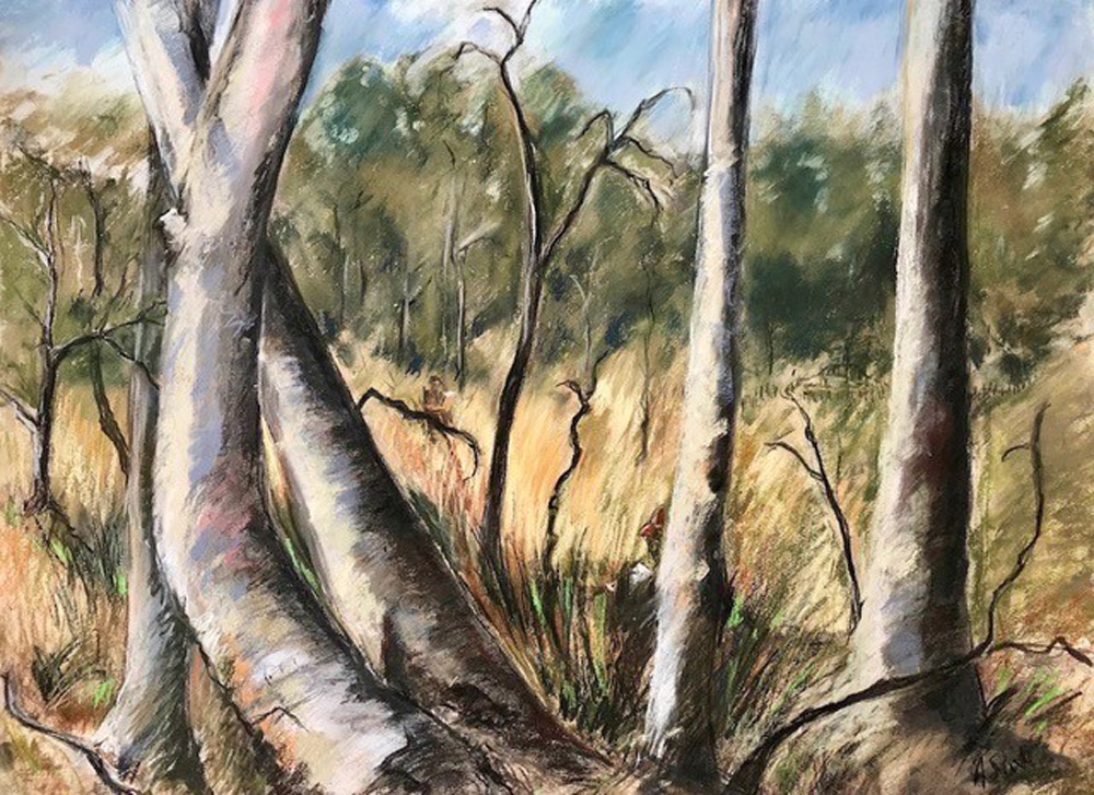Sketching in the Bush - 76cm x 57cm